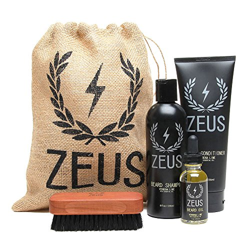 7 best beard care kits for men updated for 2018. Black Bedroom Furniture Sets. Home Design Ideas